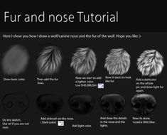 Here I show you How I do wolf fur and how I draw a canine nose Hope this help someone ^^ and . I did this in paint tool sai. Nose and fur Tutorial Digital Painting Tutorials, Digital Art Tutorial, Art Tutorials, Digital Paintings, How To Draw Fur, You Draw, Animal Paintings, Animal Drawings, Scratchboard Art