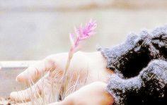 Que o tempo não me roube o prazer impagável de ver beleza nas pequenas coisas.  Rachel Carvalho