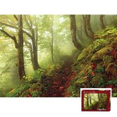 Magic Forests, puzzle, 1000 path