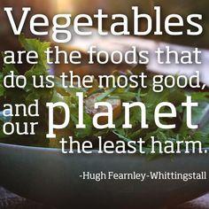 Veggie Quotes