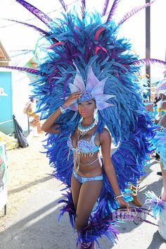 GORGEOUS COSTUME: Trinidad Carnival 2k15