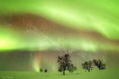 Luxury Action – The Lap of Luxury Other Countries, Finland, Places To See, Northern Lights, Beautiful Places, Hiking, Action, Luxury, Green