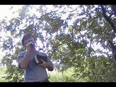 Evangelista Francisco Somália 01