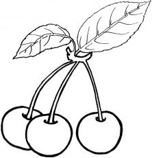 Fruit and berries coloring pages Fruit and berries. Kids printables coloring pages. Fruit Coloring Pages, Animal Coloring Pages, Coloring Pages To Print, Printable Coloring Pages, Free Coloring, Coloring Pages For Kids, Coloring Sheets, Coloring Books, Kids Coloring