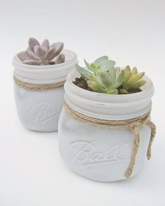 Succulents in White Painted Mason Jar -Shabby Chic Vintage Country- Plant/Flower Gift, Wedding/Baby Shower Favors Centerpieces