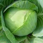 Lahana Çorbası diyeti ile hızlıca kilolarınızı verin. Uygulaması kolay şok diyet. Diet And Nutrition, Cabbage, Food And Drink, Vegetables, Fitness, Fast Weight Loss, Gymnastics, Cabbages, Keep Fit