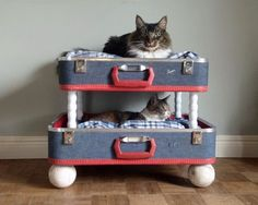 Pretty cool upcycled pet beds- would you make one for your dog or cat?