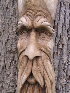 Tree carving of a face... Kathy Bob shoudl do this!!!