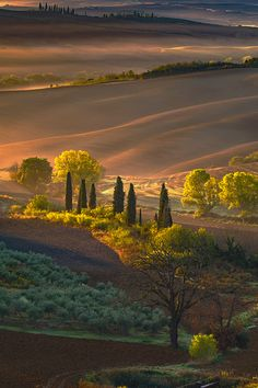 Everybody wants to visit the Toscana, Italy. The Tuscany boasts a proud heritage. left a striking legacy in every aspect of life. Italy Vacation, Italy Travel, Vacation Spots, Beautiful World, Beautiful Places, Landscape Photography, Nature Photography, Travel Photography, Tuscany Landscape