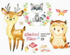 Woodland Friends 2. Watercolor animals clipart by StarJamforKids