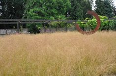 Deschampsia cespitosa  'Goldtau' at the garden of Mien Ruys : Kurt Bluemel - Horticultural Royalty Remembered -Thinking Outside the Boxwood,