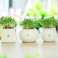 European Style Ceramic Vase without Any Flower for Home Decoration 1pc/set