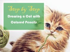 In this step by step tutorial I will show you how easy it is to draw a cat with colored pencils. You don't need many colors, actually 12 colors are enough. Materials used: Vellum Bristol Pad 100 lb (270 gsm) Faber Castell Polychromos Colored Pencils HB graphite pencil (for outlines) Colores Used: Black 199 Dark …