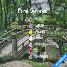 Essential Oils Room Spray, Essential Oil Scents, Essential Oil Perfume, Essential Oil Diffuser Blends, Doterra Essential Oils, Vanilla Essential Oil, Rose Essential Oil, Diffuser Recipes, August 20