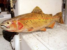 Cutthroat trout 27 chainsaw wood carving sport fishing trophy wa