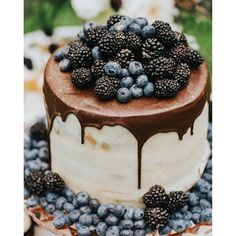 A cake topped with berries is perfect for summer.. and well, delicious! Celebrating #WeddingWednesday by reminiscing on this pretty shoot on IBT - find the link in our bio and feast your eyes on more than just this confection! (Photo by @moniqueserraphoto