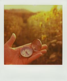 taken by JENNA GERSBACH on #PX70 color protection film