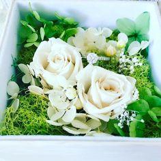 Ring display with preserved flowers #cmeldesign #preservedflower #jewelrybox #whiterose #不凋花 #永生花