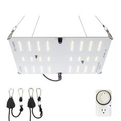 Horticulture Lighting Group Equivalent White Light Full Spectrum LED Plant Grow Light - The Home Depot Grow Light Bulbs, Grow Lights For Plants, Led Grow Lights, Light Bulb Bases, Home Depot, Lowes Home Improvements, Hydroponic Equipment, Grow Lamps, Colors