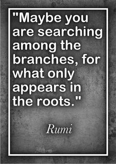 Go to the root... #rumi #quote