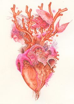 Anatomical heart illustration by Wendy Wallin Malinow, gouache, coral corazon, Art And Illustration, Illustrations, Ocean Tattoos, Mermaid Tattoos, Turtle Tattoos, Tribal Tattoos, Kunst Tattoos, Frida Art, Symbol Tattoos
