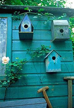 with birdhouses