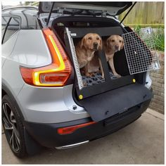 Volvo XC40 (2019 - Present) Dog Car Travel Crate- DT Box About the Volvo XC40 DT Box The Volvo XC40 DT Box dog car crate is made specifically for the new Volvo XC40 (2019-Present). It is a very popular box and can hold two medium sized dogs such as two Labradors as seen above. It comes with a removable divider which frees up more space if you need it for larger dogs. This box was featured in our blog post, for more information check it out here. The box is made from a super tough lightweight… Pet Vet, Dog Crates, Dog Boots, Stainless Steel Doors, Medium Sized Dogs, Dog Car, Labradors, Car Travel, Large Dogs