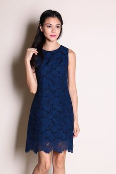 Embroidered Mesh Overlay Dress (Navy)  $40