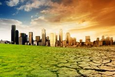 Нешто није у реду: Откуд толико суша истовремено у свим областима на планети?