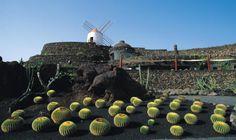 The cactus garden by Cesar Manrique, Guatiza, Lanzarote.