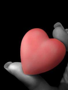 """julietandlove:  """"Sobre tudo o que se deve guardar, guarda o teu coração, porque dele procedem as fontes da vida.""""   Provérbios 4:23"""