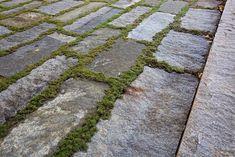 Reclaimed Paving, Granite Planks | Stone Farm Bluestone Paving, Paving Stones, Thin Brick Veneer, Stone Farms, Paving Ideas, Stone Masonry, Granite Stone, Concrete Garden, Stone Work