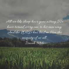 Lamentations Because of the LORD's great love we are not consumed, for his compassions never fail. They are new every morning; Isaiah 52, Jesus Reigns, Galatians 6 9, Great Is Your Faithfulness, Who Is Jesus, New Every Morning, Love Your Neighbour, Biblical Verses, Lamentations