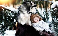 狼と赤ちゃんの写真壁紙