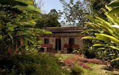 a cottage hidden in the garden