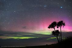 Auroras australes desde Nueva Zelanda – El Universo Hoy