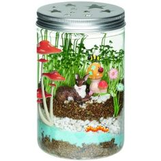 Creativity For Kids Grow 'N Glow Terrarium Science Kits for Kids - Create Your Own Mini Ecosystem, Educational Toys Science Kits For Kids, Indoor Activities For Kids, Science Activities, Preschool Ideas, Terrarium Diy, Mason Jar Terrarium, Mason Jars, La Germination, Pots