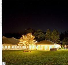 lights. tent. outdoor wedding reception