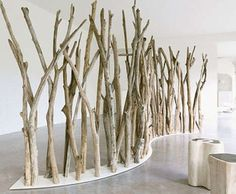Driftwood room dividers.  I need more ideas for the driftwood I picked up off of Lake Huron.