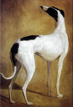 Jacques Laurent Agasse (1767-1849), Study of a Greyhound, n.d.