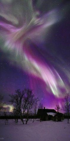 purple aurora borealis