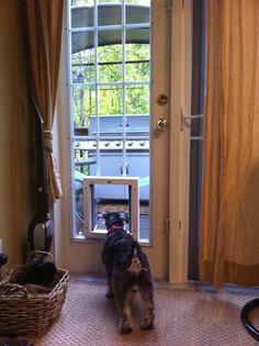 Dog Sliding Glass Patio Doors | Sliding Glass Door with Dog Door