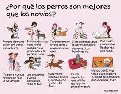 ¿Por qué los perros son mejores que l@s novi@s?