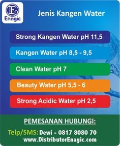 Enagic Kangen Water Indonesia