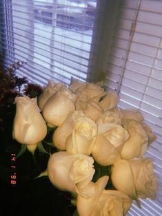 Book Flowers, Gift Flowers, Alcohol Aesthetic, Teddy Girl, 21st Birthday Cakes, Luxury Flowers, Wonderful Flowers, Flower Aesthetic, Photos Tumblr