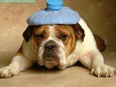 headache :(