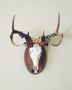nice cool cool awesome Deer crown ✨ European mount... - Home Decor Ideas...... by w...                                                                                                                                                                                 More