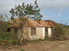 Kunukuhut  Curacao