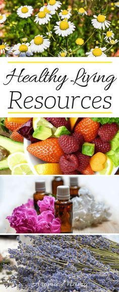 Healthy Living Resources is full of resources for anyone that has goals of living a healthier lifestyle. It includes organic and non-GMO food, skin care, essential oils, babies, kids, educational, and health resources. via @thearomamama