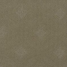 Color: 00301 Estate Q2133 Adaptation - Shaw Anso Nylon Carpet  Georgia Carpet Industries